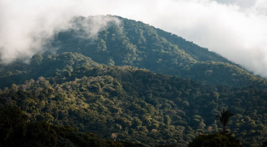 Can nature-based solutions offer climate resilience in El Salvador?