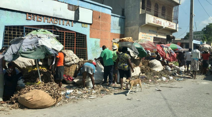 Contrasting levels of resilience: The cases of Haiti and Japan
